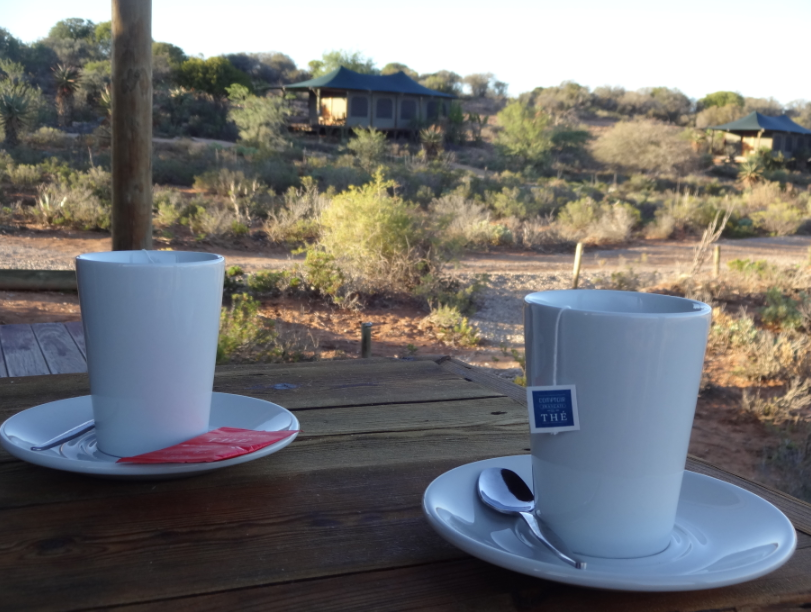 Tasse Afrique du Sud